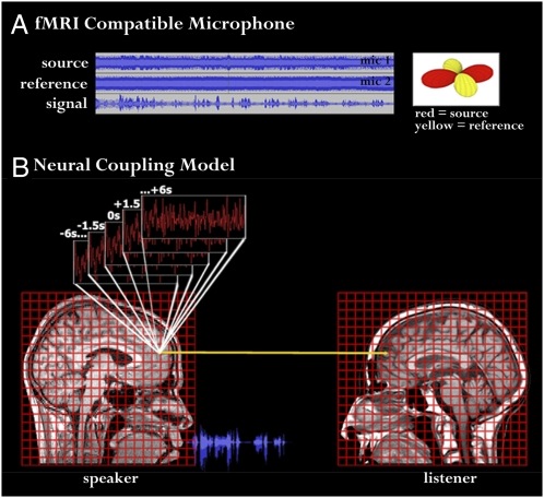 neural coupling