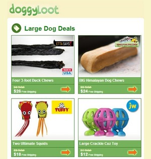 doggy loot market segmentation