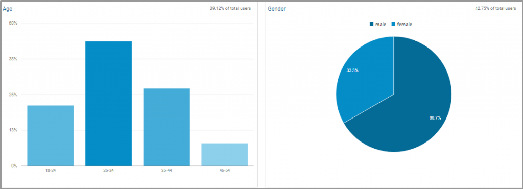 google analytics demographic segmentation