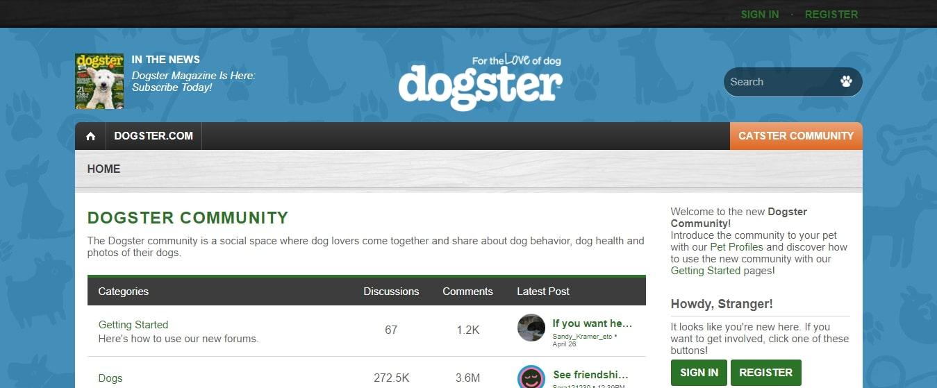 dogster niche social media platform
